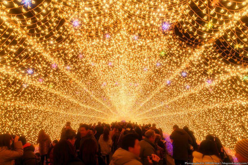 なばなの里 ウィンターイルミネーション 2013-2014 光のトンネル 華回廊 01