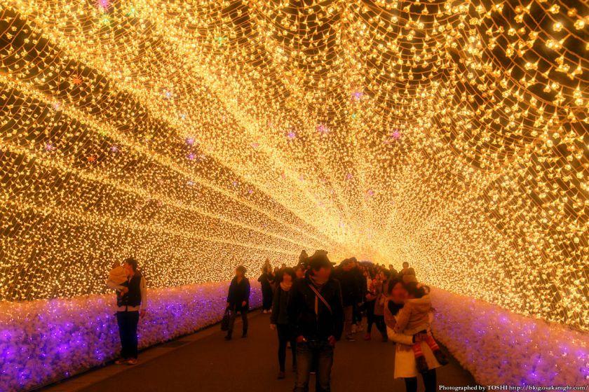 なばなの里 ウィンターイルミネーション 2013-2014 光のトンネル 華回廊 02