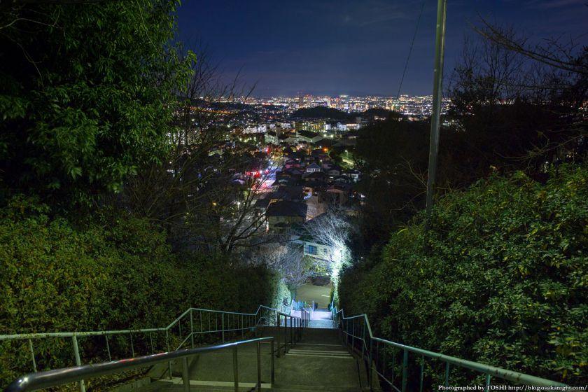高槻大和ネオポリス 夜景 大階段 01