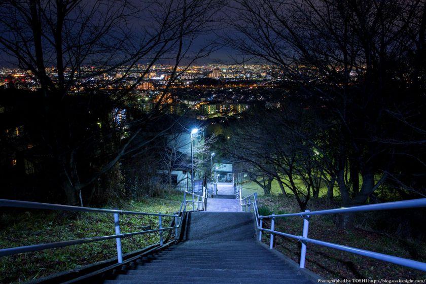 高槻大和ネオポリス 夜景 大階段 02