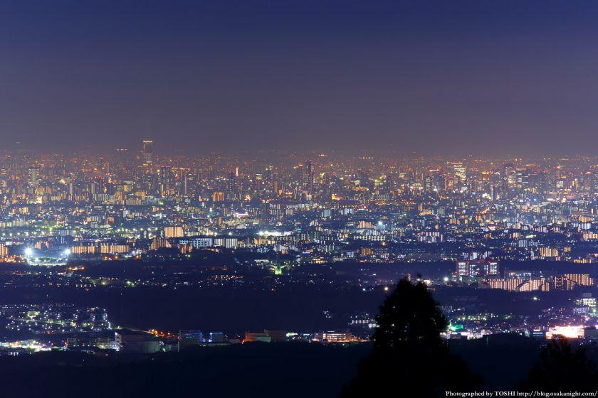 竜王山展望台 大阪都心部 夜景