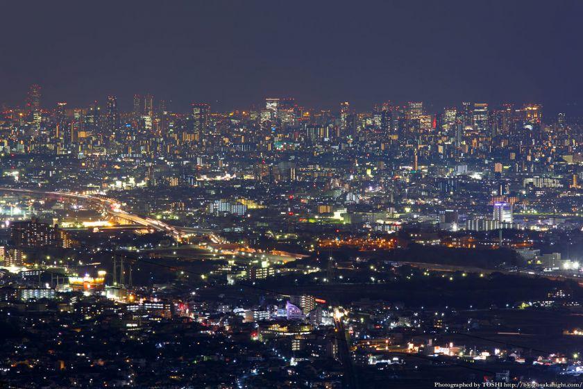 交野山 観音岩からの夜景 大阪市中心部