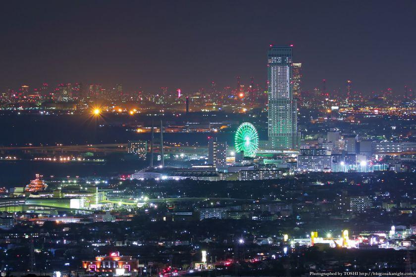 阪南スカイタウン 展望緑地 夜景 05 りんくうタウン