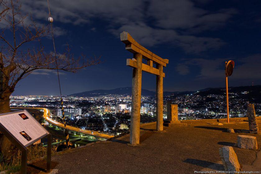 五月山 秀望台 夜景
