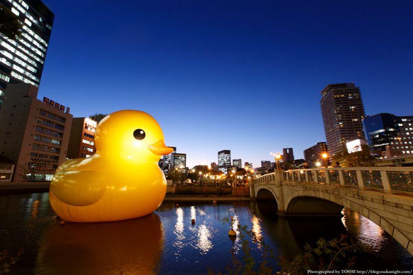 ラバーダック in 水都大阪フェス2015 夜景