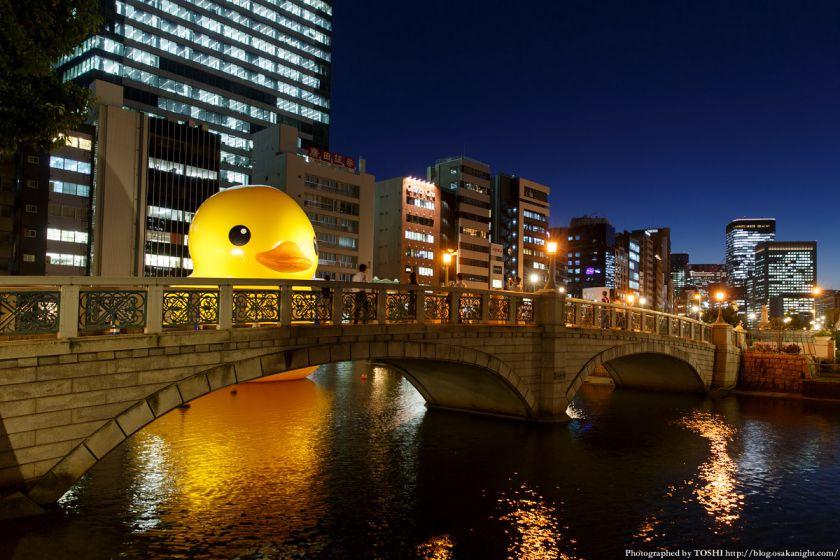 ラバーダック in 水都大阪フェス2015 02