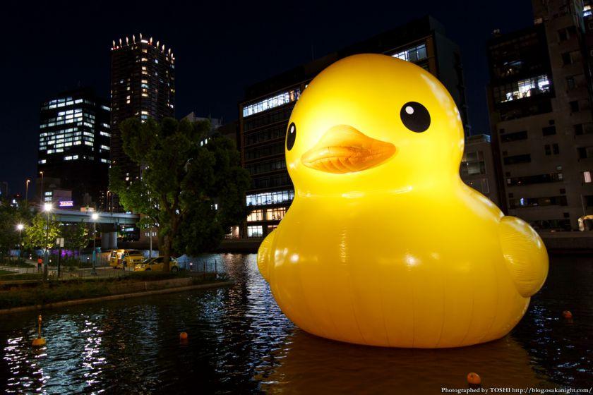 ラバーダック in 水都大阪フェス2015 06