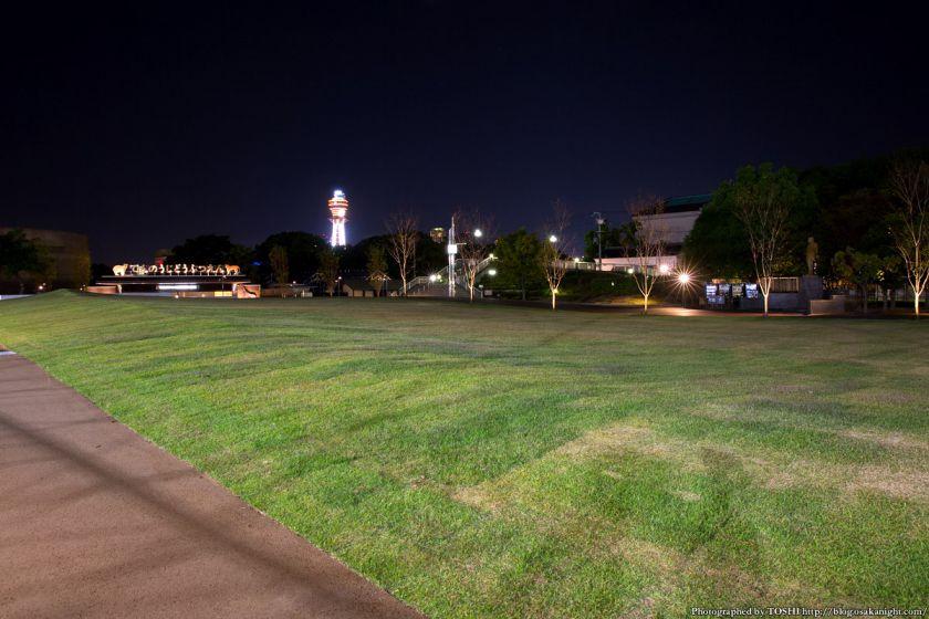 天王寺公園 てんしば 夜景 2015年10月 06