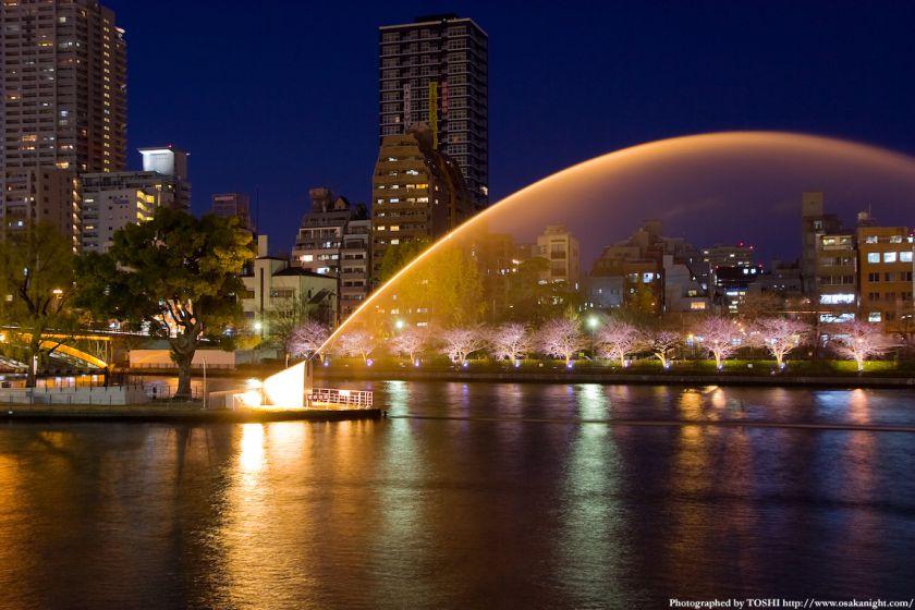 中之島公園の大噴水 夜景