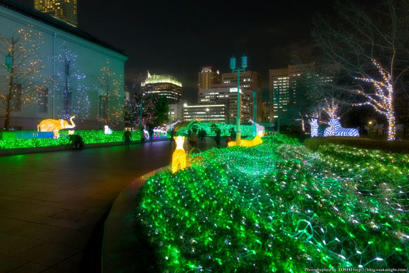 あべの・天王寺イルミナージュ 2015 01