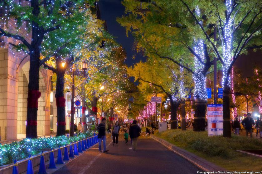 大阪・光の饗宴2016 開演式 御堂筋イルミネーション 04