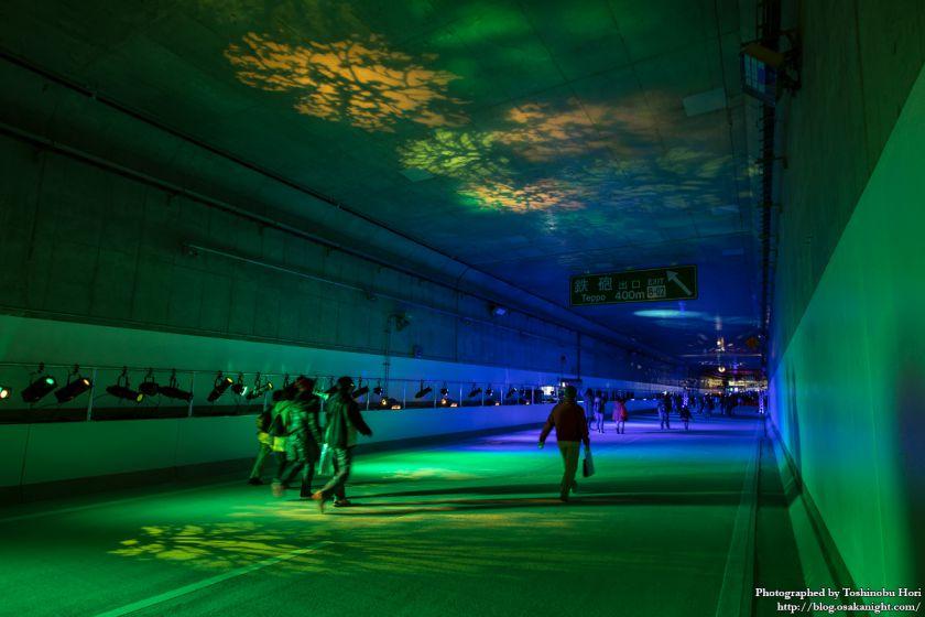 阪神高速大和川線(三宝ジャンクション〜鉄砲)開通記念イベント ハイウェイウォーク 2017年1月 18