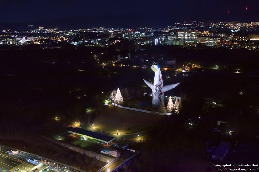 エキスポシティ大観覧車 Redhorse OSAKA WHEEL 2017 夜景 03 太陽の塔