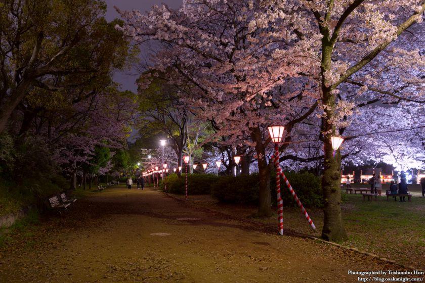 大阪城西の丸庭園 観楼ナイター 2017 02