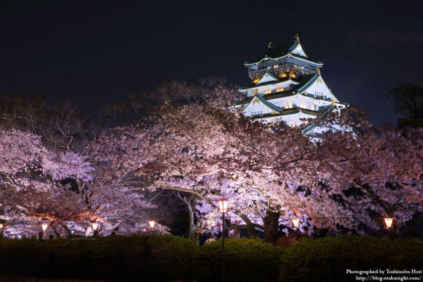 大阪城西の丸庭園 観楼ナイター 2017 05