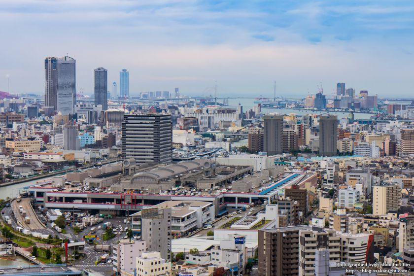 大阪国際会議場(グランキューブ大阪) 屋上 10 ベイエリア方面