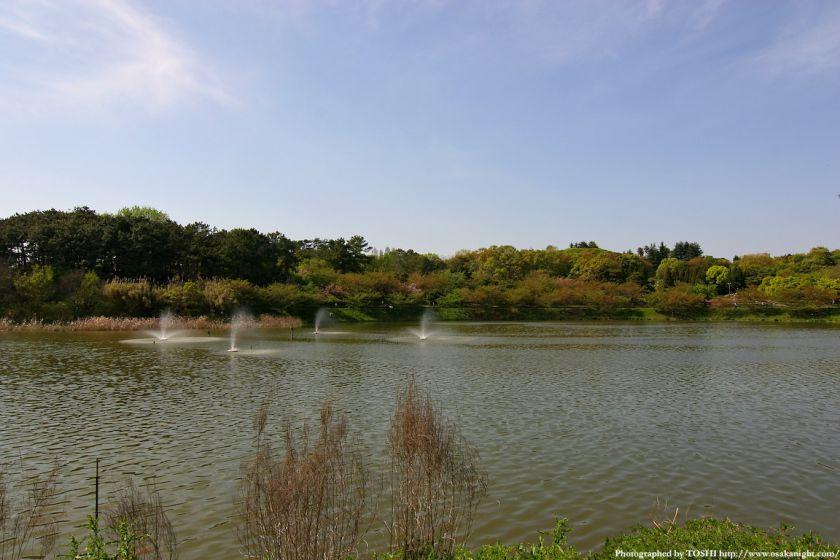 鶴見緑地 大池