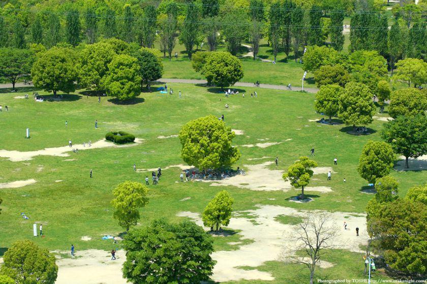 鶴見緑地 大芝生
