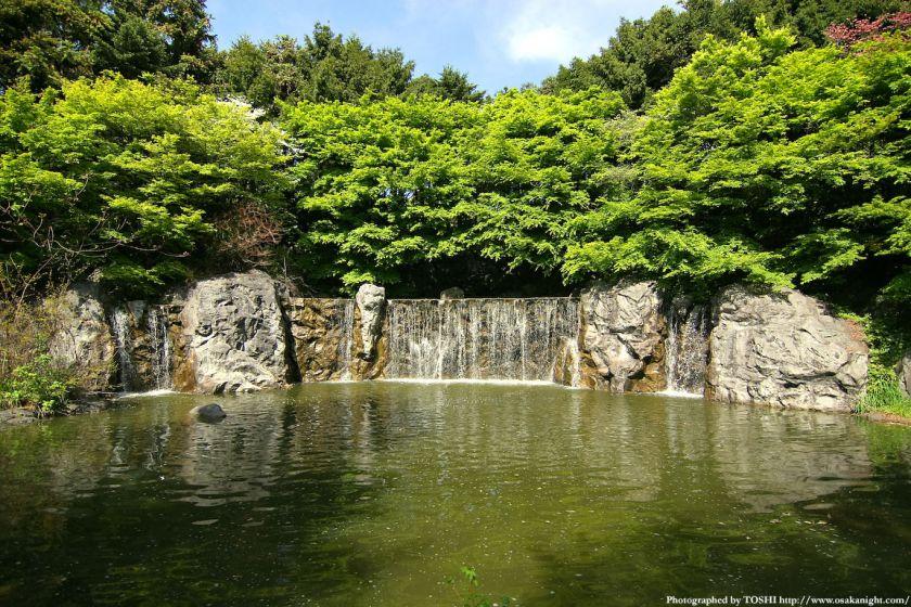 鶴見緑地 カナダ庭園の滝