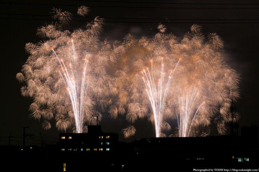 教祖祭PL花火芸術2010(大阪富田林)09