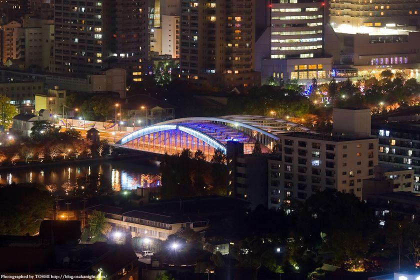 銀橋(桜宮橋) 夜景