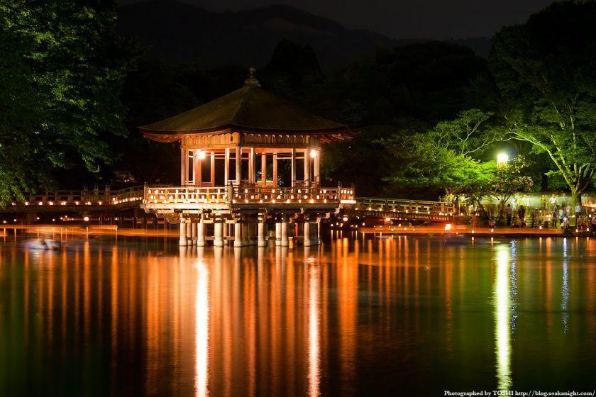 奈良・浮見堂のライトアップ