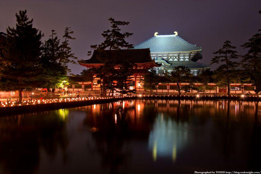 東大寺 鏡池の夜景
