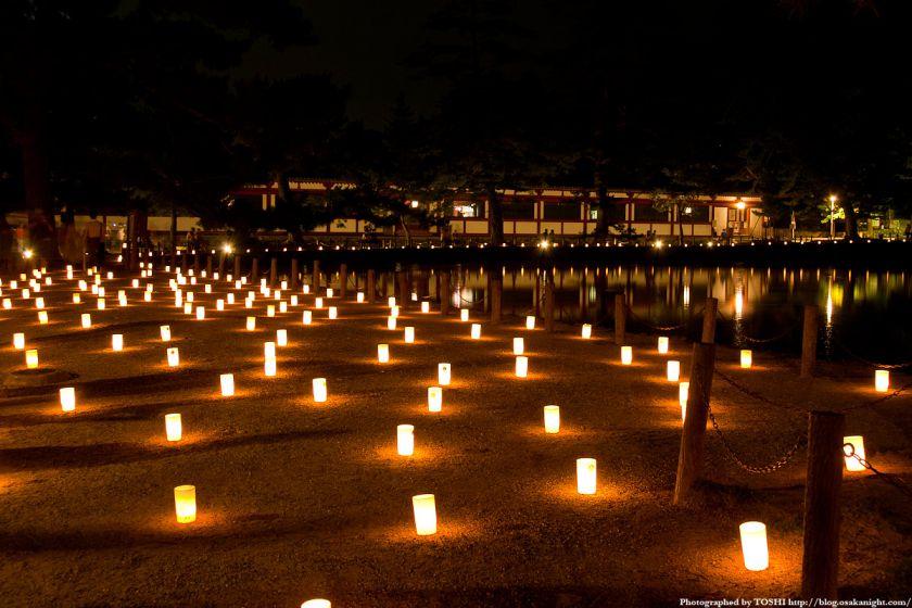 奈良・燈花会