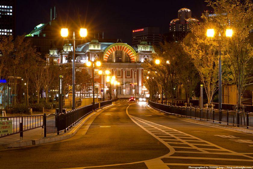 中之島通りと大阪市中央公会堂