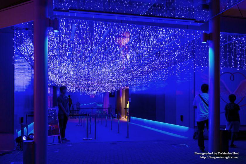 エキスポシティ 青の洞窟 OSAKA INFINITY RISTORANTE 2018年9月 03