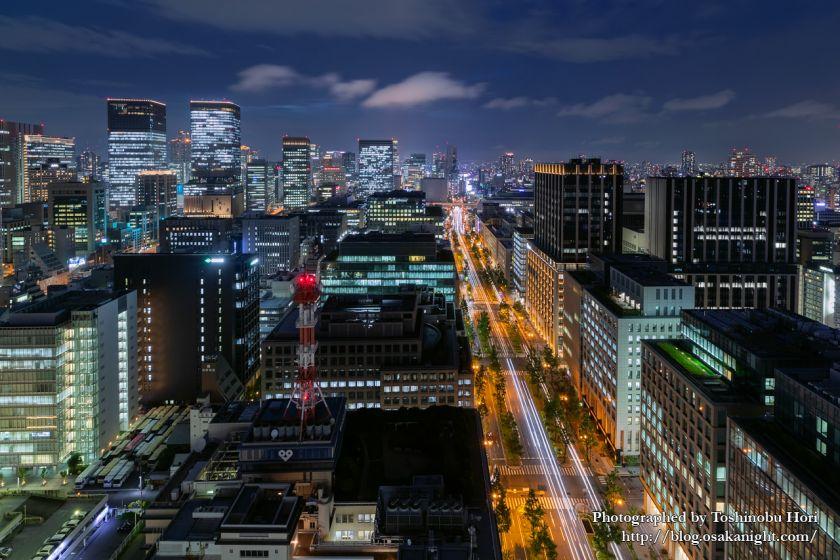 ザ ロイヤルパークホテル アイコニック 大阪御堂筋からの夜景